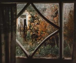fall, window, and autumn image