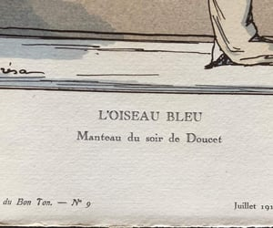 blue bird, french fashion, and bluebird image