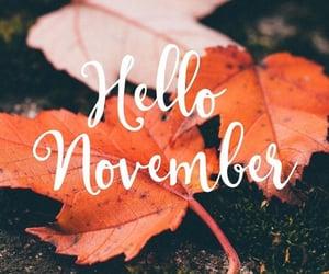 autumn and hello november image