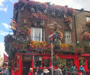 dublin, temple bar, and irlande image