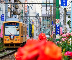 aesthetic, tokyo, and 向原 image