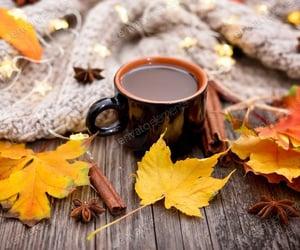 autum, coffe, and november image
