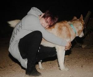 colby brock, dog, and samandcolby image