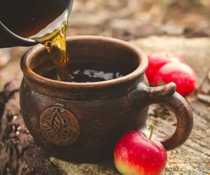 apples, autumn, and apple cider image
