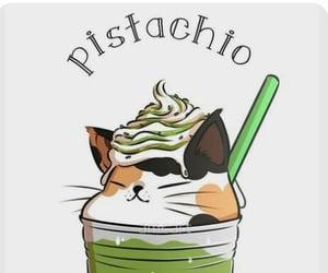 cat, wallpaper, and pistachio image
