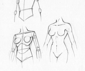 body, women, and drawing image