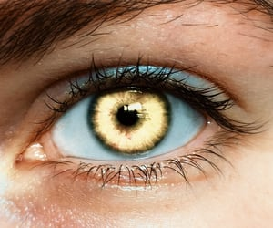 eyes, gold, and golden image