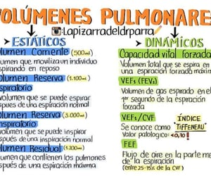 Estudio, medicina, and respiracion image