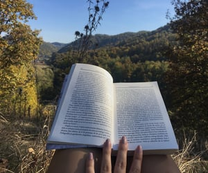 autumn, book, and forest image