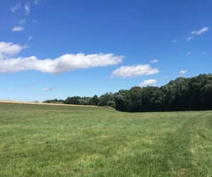 August, walk, and field image