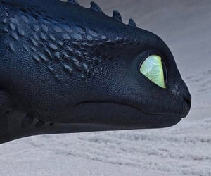 couple, toothless, and how to train your dragon image