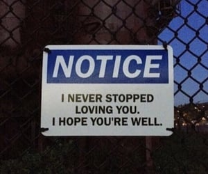 love, notice, and sign image