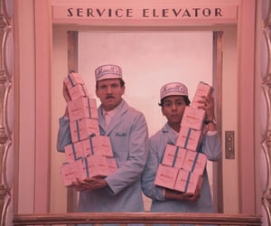 pink and the grand budapest hotel image
