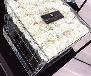 box, roses, and whiteroses image