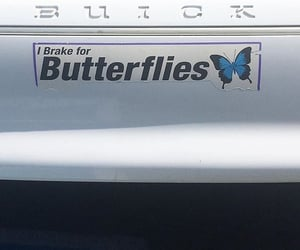 butterfly, car, and aesthetic image