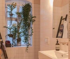 home, bathroom, and plants image