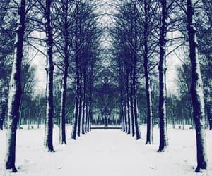 beautiful, mirror, and season image