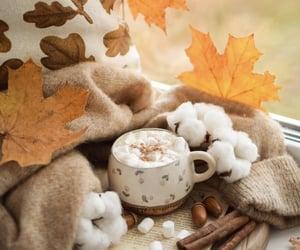 autumn, food, and hot cocoa image