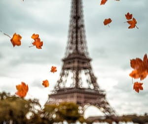 city, eiffeltower, and fall colors image