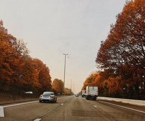 autumn, cars, and fall image