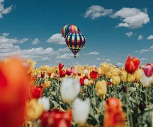 aesthetic, amazing, and baloons image