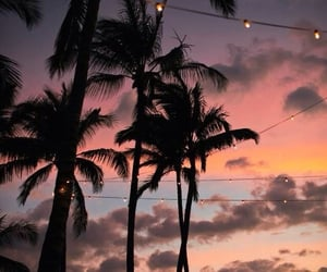 sunset, aesthetic, and beach image