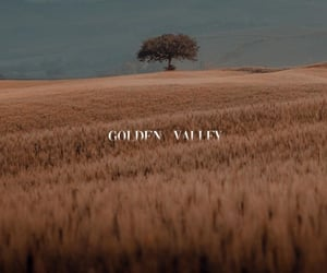 gold, golden, and places image