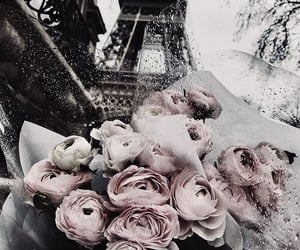 beautiful, eiffel tower, and flowers image