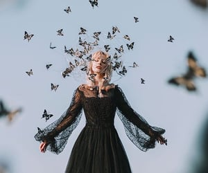 article, fairy, and if i was a fairy image