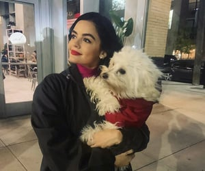 actress, lucy hale, and pretty little liars image