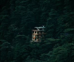 architecture, forest house, and cozy image