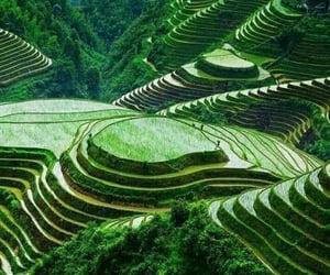 paisaje, verde, and belleza image