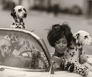 Naomi Campbell, dog, and model image