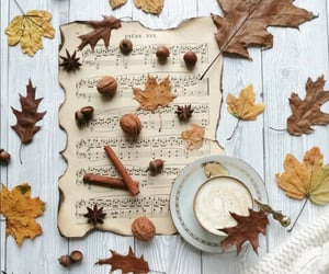 autumn, coffee, and cup of coffee image