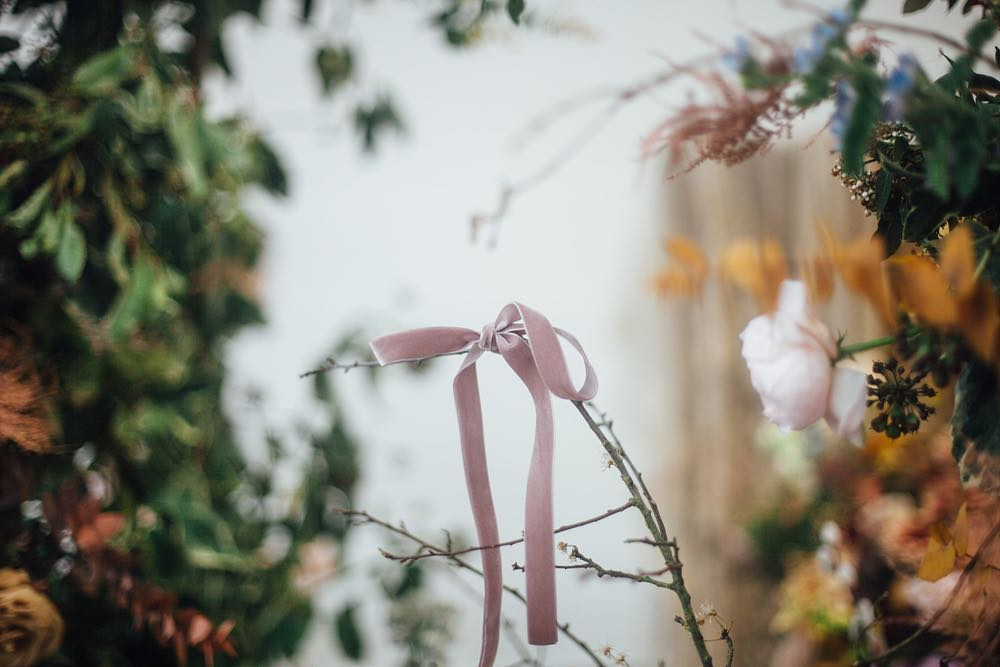 bow, flowers, and garden image