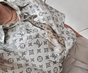 beige, fashion, and Louis Vuitton image