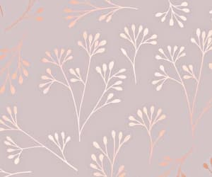 pink and wallpaper image