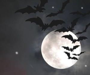bats, Halloween, and moon image