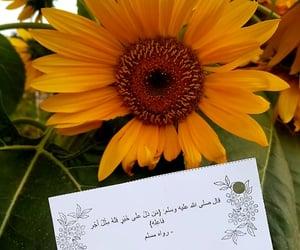 رسول الله, ﷴ, and صل الله عليه و سلم image