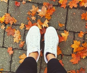 autumn, leaves, and trainers image