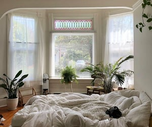 cozy, bed, and home image