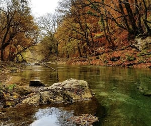autumn, beautiful, and photo image