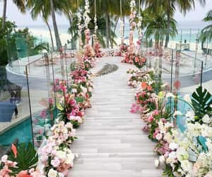 flowers, beach, and beautiful image