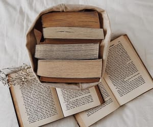 aesthetic, bibliophile, and bookish image