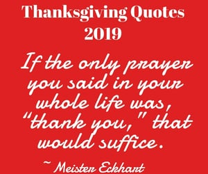 thanksgiving quotes, happy thanksgiving quotes, and thanksgiving quotes 2019 image