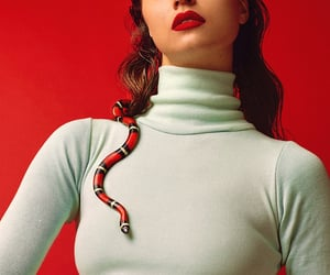 red, serpent, and snake image