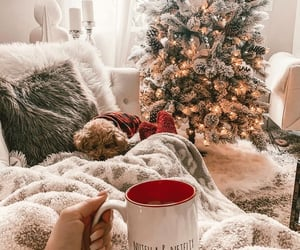 aesthetic, coffee, and tree image