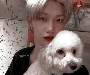 felix, psd icons, and ulzzang icons image