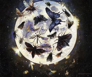 art, Dream, and insects image