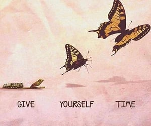 butterfly, time, and quotes image